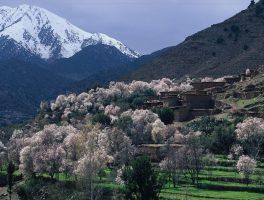 4 days desert tour to Merzouga via Draa valley