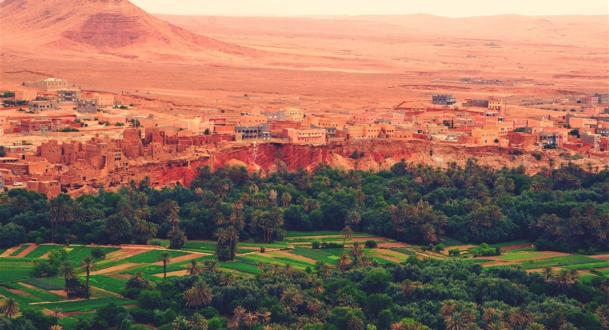 3 day Atlas & Desert Tour to Fes