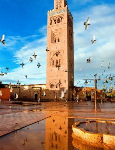 Guided full day trip to marrakesh